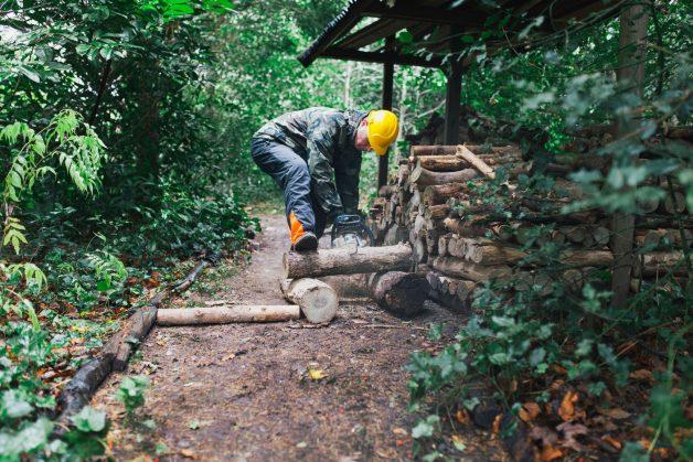 Lumberjack chainsaw