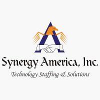 Synergy America, inc's logo