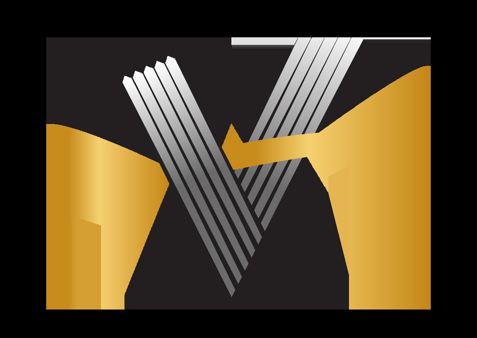 Visium Resources's logo