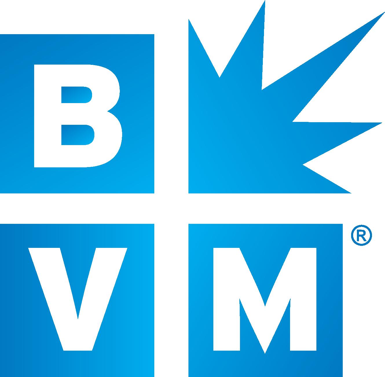 Best Version Media's logo