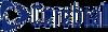 Cerebral Staffing, LLC's Logo