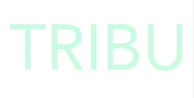 TRIBU, Inc. - Logo